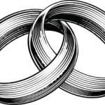 connected wedding bands